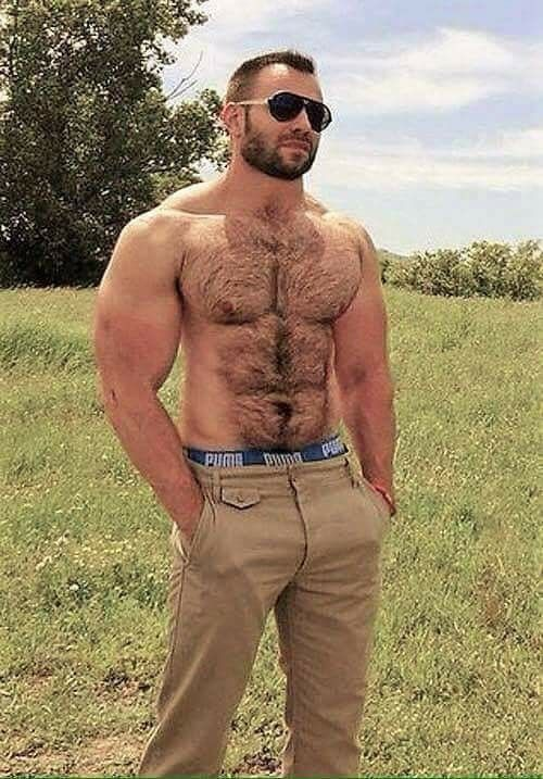 Hairy gay pictures